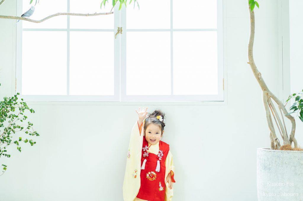 三歳の七五三着物